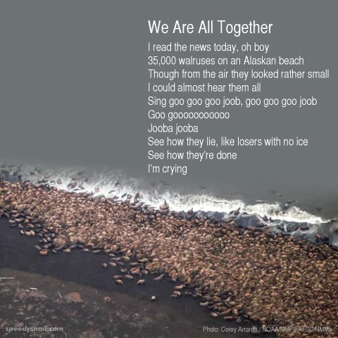 We Are All Together