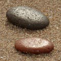 Scottish Sand II