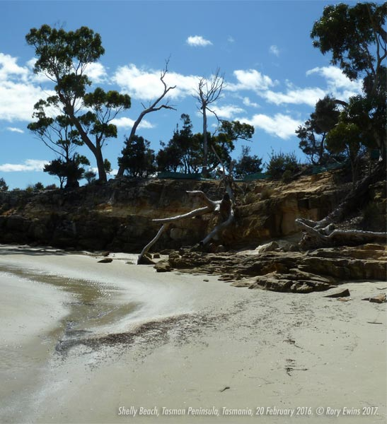 Shelly Beach, Tasman Peninsula